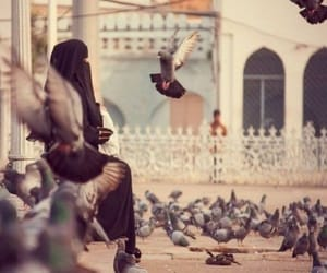 islam, niqab, and birds image