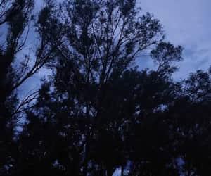 amor, blue sky, and paz image