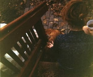 girl, autumn, and dog image