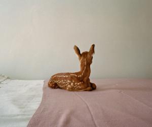 bambi, photography, and plain image