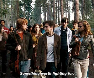 daniel radcliffe, gif, and jk rowling image