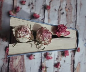 book and roses image