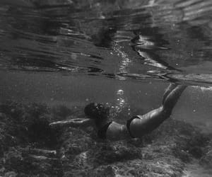 black and white, dive, and diving image