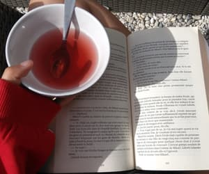 book, perfect day, and summer vibes image