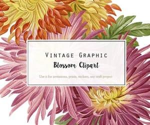 etsy, digital download, and digital flower image