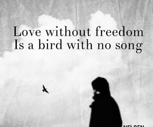bird, poetry, and quotes image