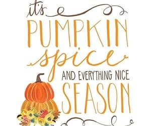 autumn, fall, and pumpkin spice image