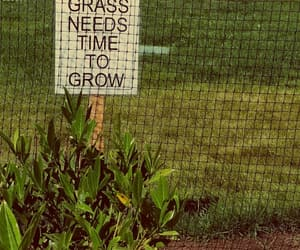 confidence, depression, and grass image