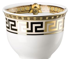 gold, white, and Versace image