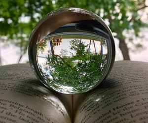 forest, green, and glass image