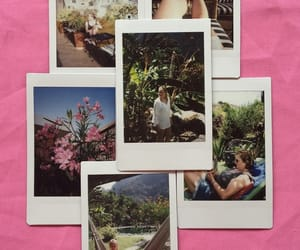 instax, pictures, and polaroid image