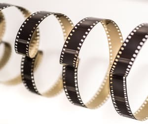 article, film, and entertainment image