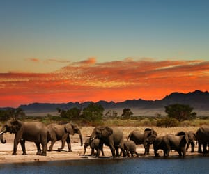 south africa travels and south africa tourism image