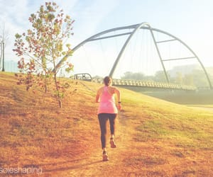 bridge, motivation, and social media image