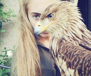 animal, eyes, and girl image
