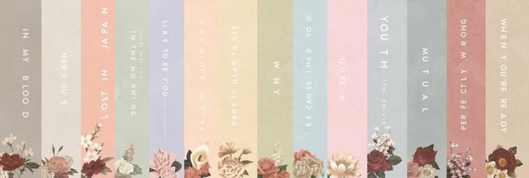 Shawn Mendes The Album On We Heart It