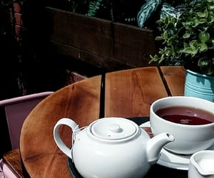 bar, cafe, and summer image