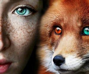 eyes, girl, and animal image