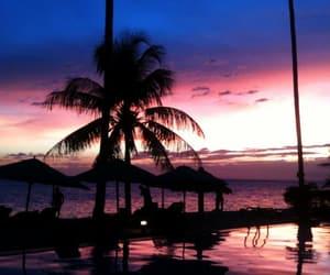 beach, palmiers, and shine image