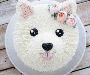 cake, dog, and food image