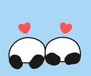 funny, heart, and panda image