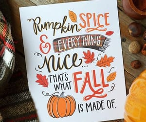 leaves, pumpkins, and pumpkin spice image