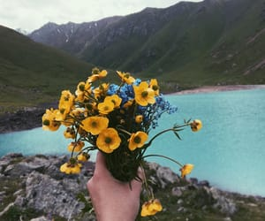 flowers, mountains, and nomad image