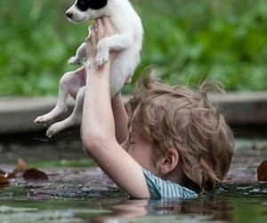 baby, dog, and best friends image