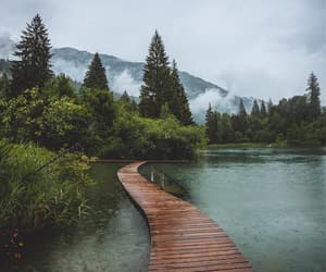 nature, beautiful, and landscape image