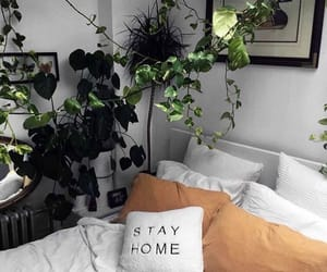 bed, home, and plants image
