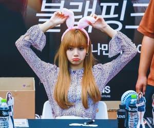 bunny, idol, and girl image