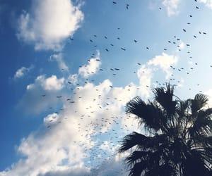 blue, sky, and wonderful image