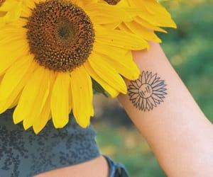 skeleton, summer, and sunflower image