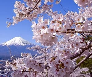 japan, mountain, and blue image
