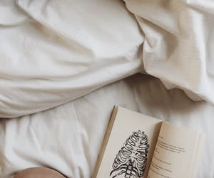 bed, reading, and books image