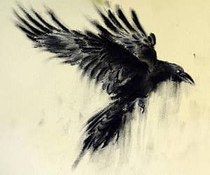 crow and drawing image