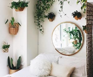 plants, bedroom, and white image
