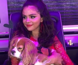 gomez, red, and selena image
