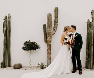 cactus, dress, and couple image