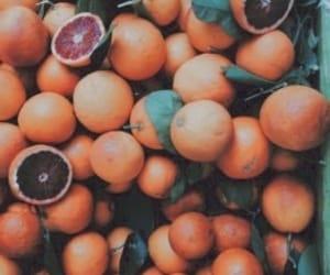 beauty, boho, and grapefruit image