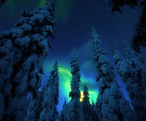 aurora, landscape, and night image