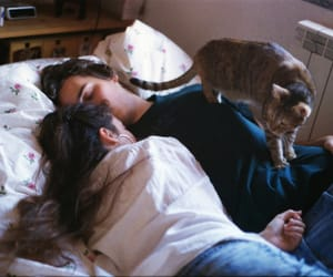 couple, love, and cat image