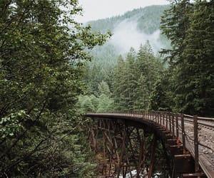 adventure, away, and bridge image