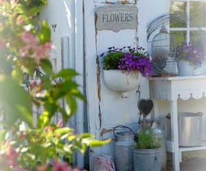 flowers, pastels, and shabby chic image