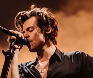 Harry Styles, houston, and styles image