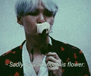 flowers, quotes, and bts image