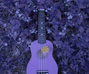 aesthetic, flowers, and guitar image