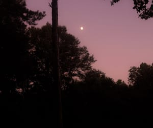 dusk, moon, and nature image