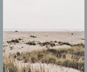 beach, dreary, and indie image