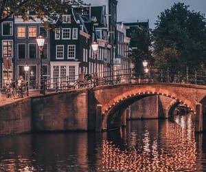 amazing, night, and amsterdam image